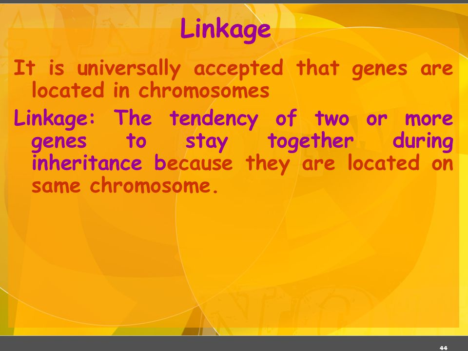 03/06/11 Linkage. It is universally accepted that genes are located in chromosomes.