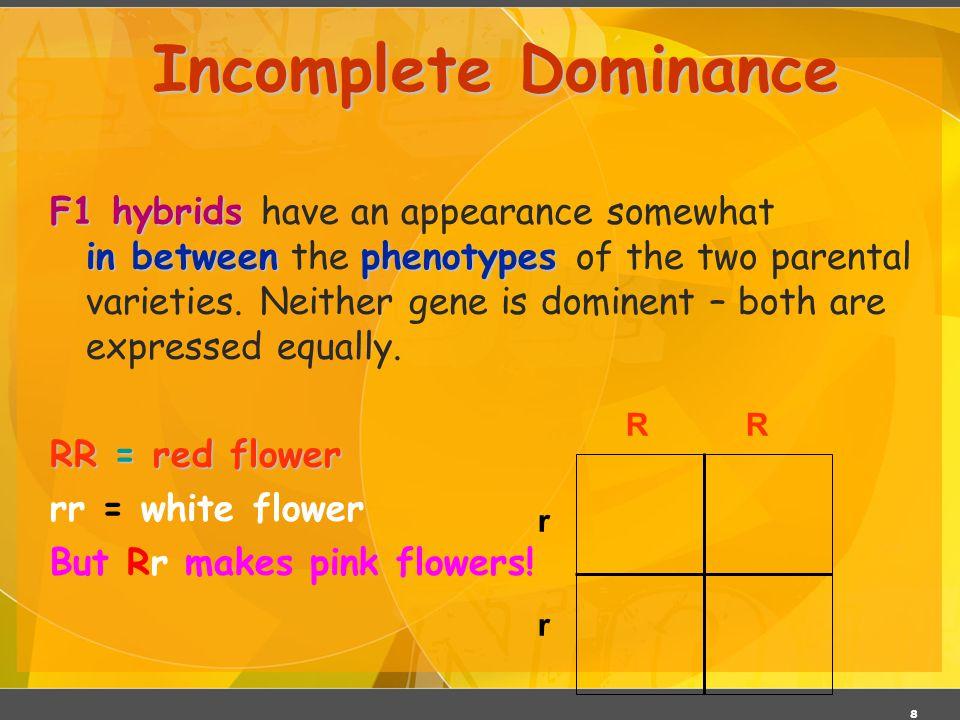 03/06/11 Incomplete Dominance.