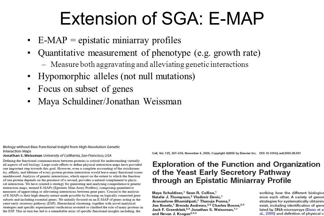 Extension of SGA: E-MAP