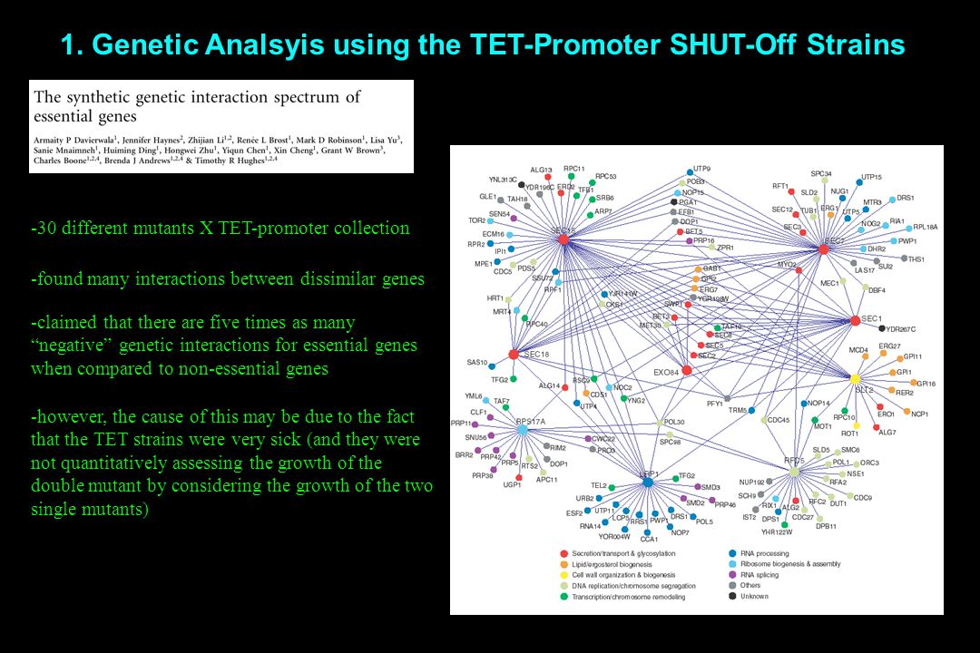 1. Genetic Analsyis using the TET-Promoter SHUT-Off Strains