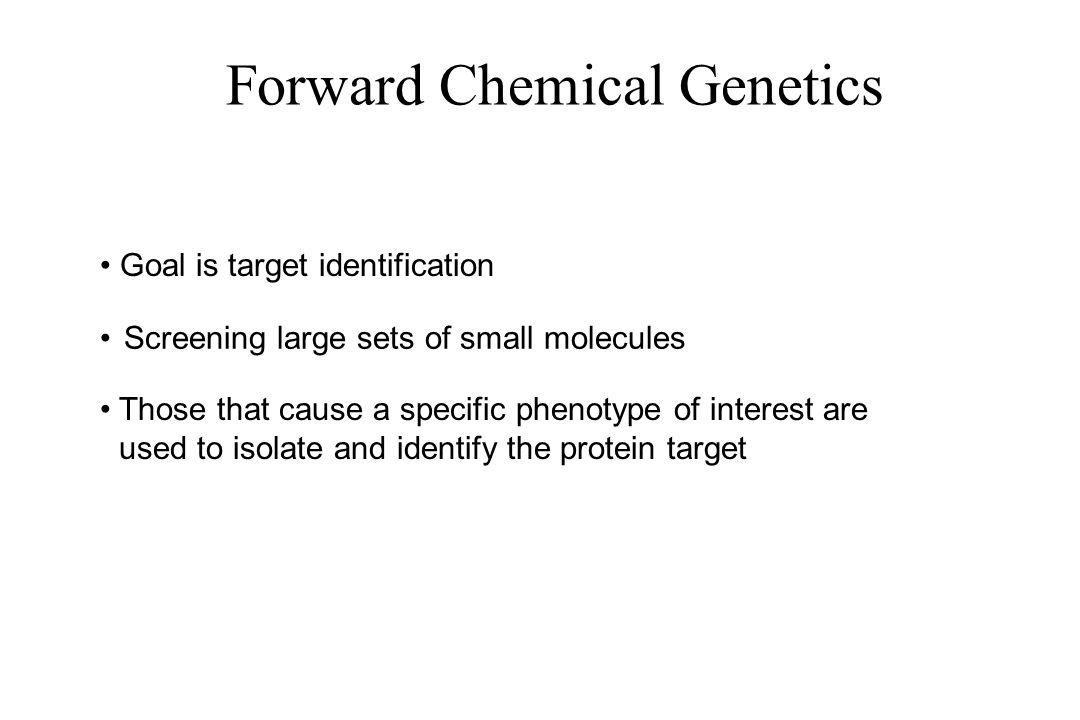 Forward Chemical Genetics
