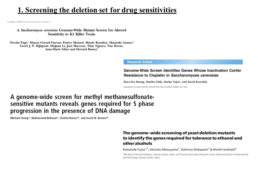 1. Screening the deletion set for drug sensitivities