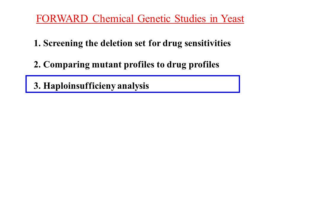 FORWARD Chemical Genetic Studies in Yeast