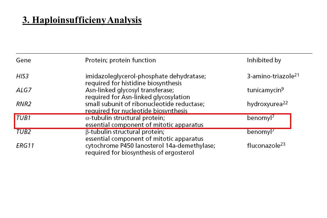 3. Haploinsufficieny Analysis