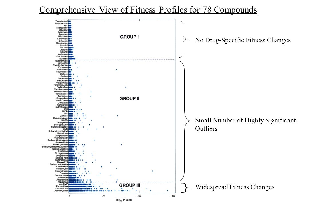 Comprehensive View of Fitness Profiles for 78 Compounds