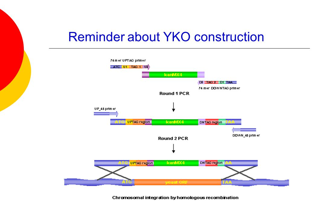 Reminder about YKO construction