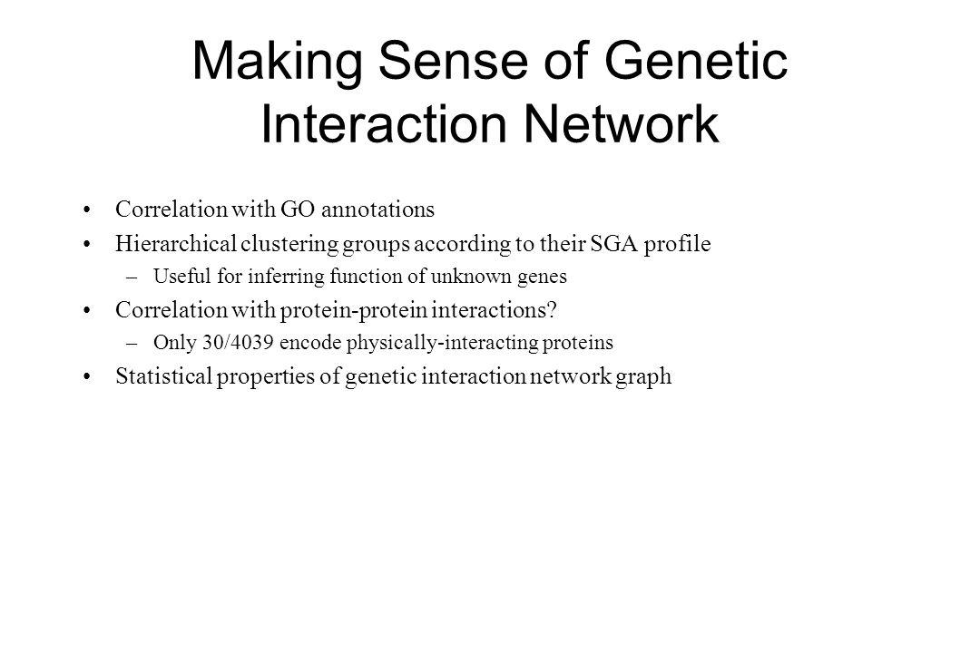 Making Sense of Genetic Interaction Network