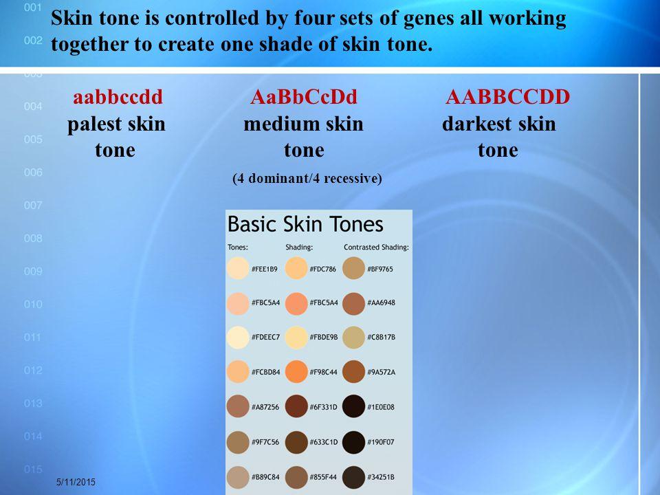 aabbccdd AaBbCcDd AABBCCDD palest skin medium skin darkest skin