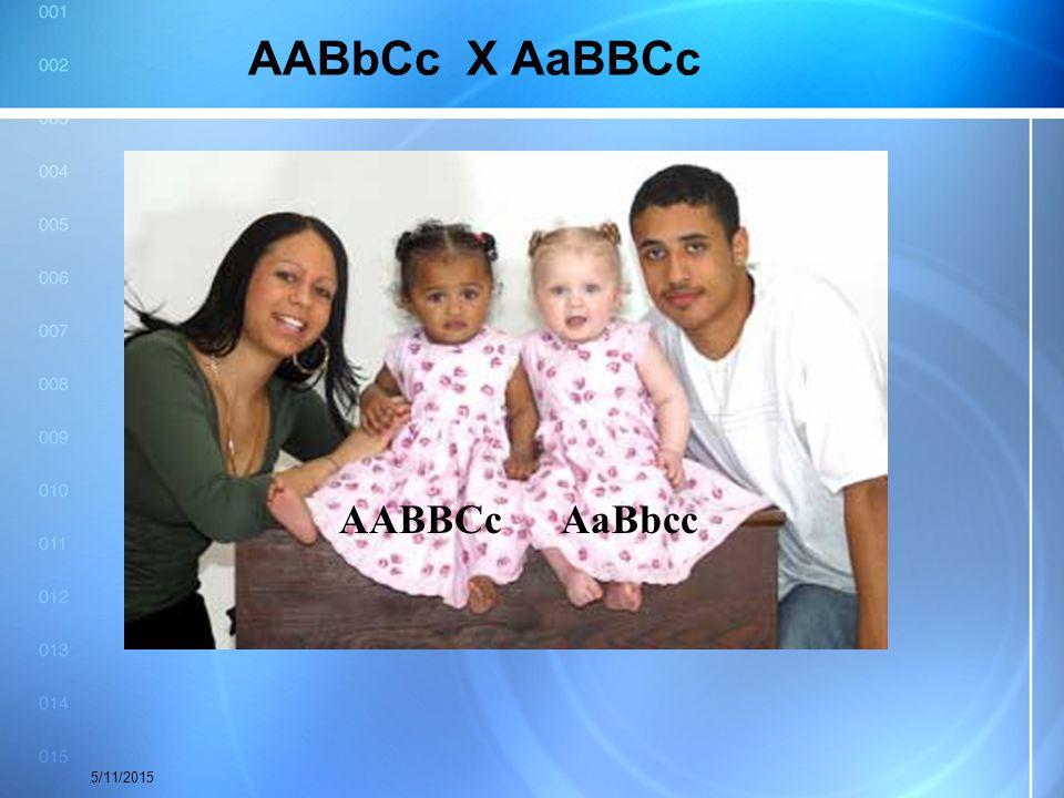 AABbCc X AaBBCc AABBCc AaBbcc 4/15/2017