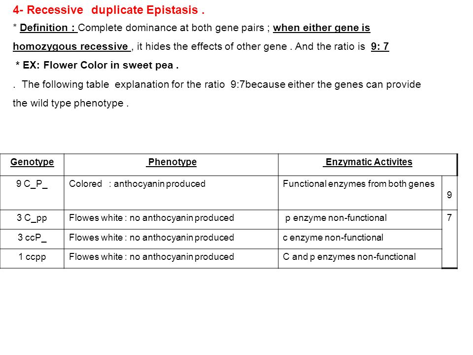 4- Recessive duplicate Epistasis .