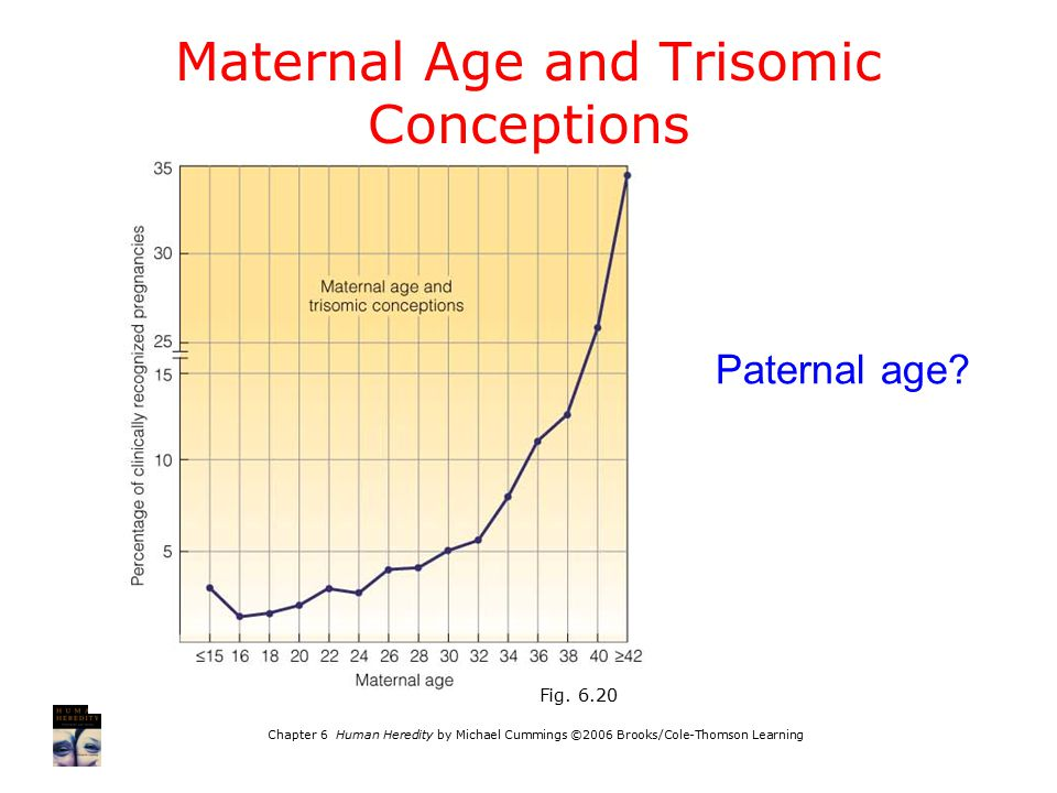 Maternal Age and Trisomic Conceptions