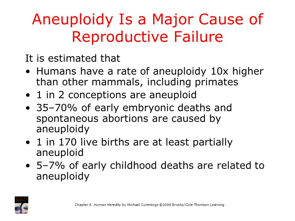 Aneuploidy Is a Major Cause of Reproductive Failure