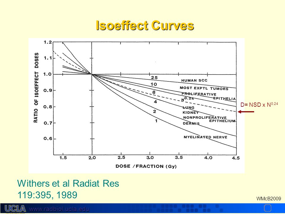 Isoeffect Curves D= NSD x N0.24 Withers et al Radiat Res 119:395, 1989