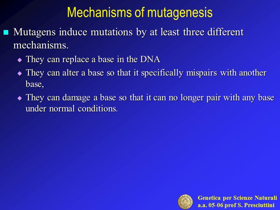 Mechanisms of mutagenesis