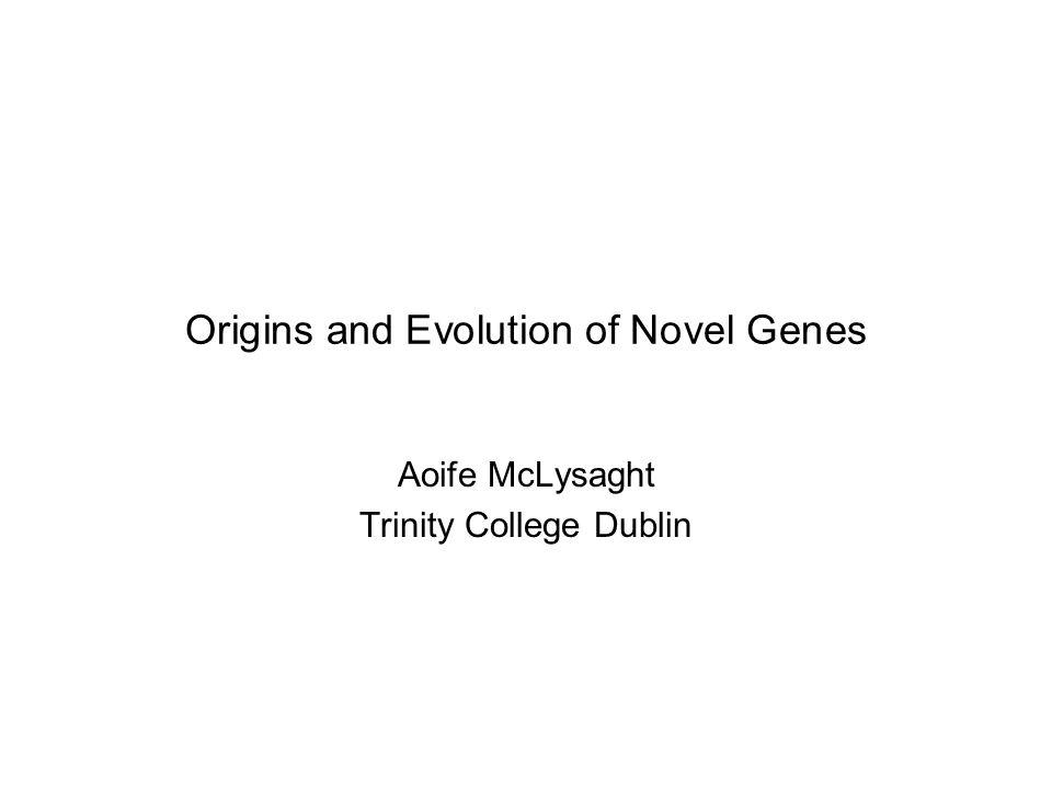 Origins and Evolution of Novel Genes