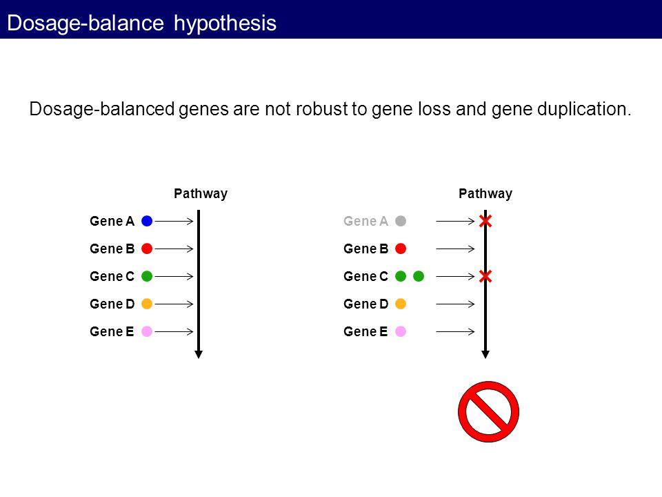 Dosage-balance hypothesis