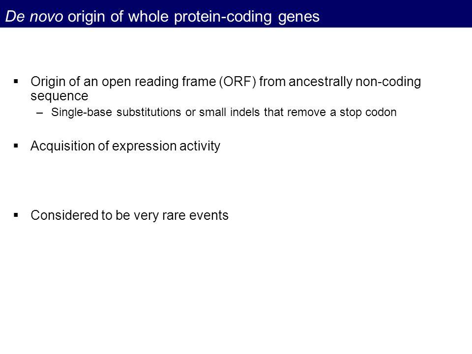 De novo origin of whole protein-coding genes