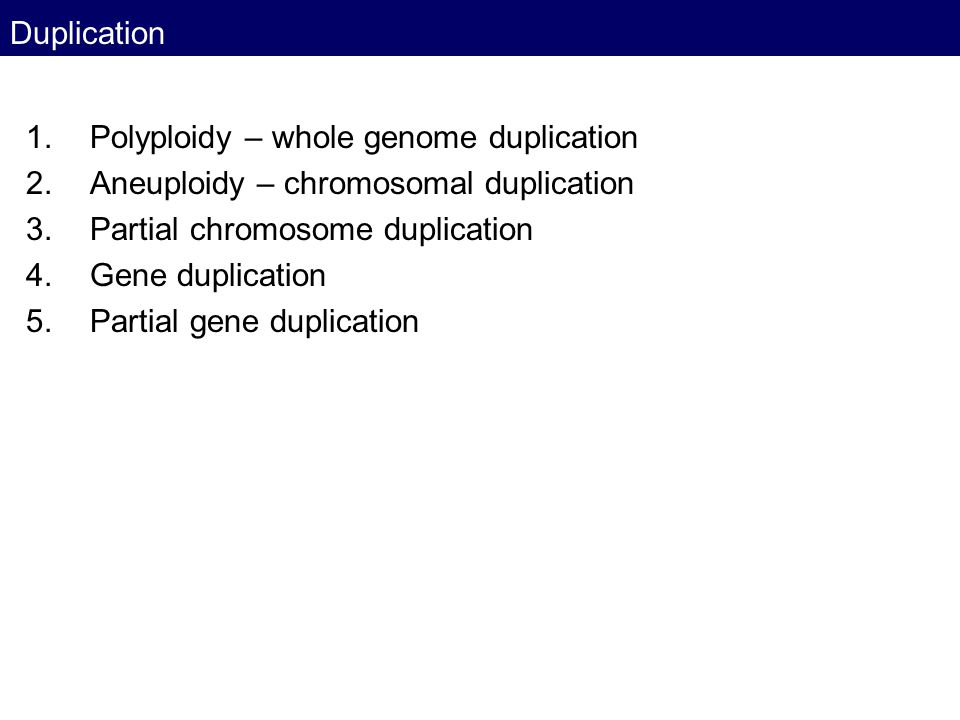 Polyploidy – whole genome duplication