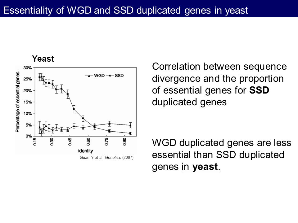 Essentiality of WGD and SSD duplicated genes in yeast