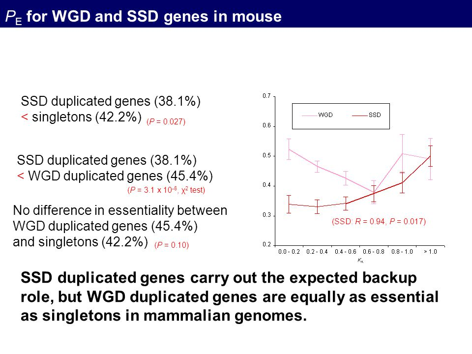 PE for WGD and SSD genes in mouse