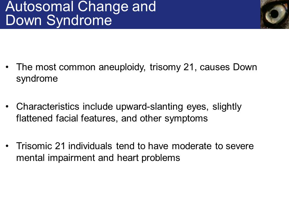 Autosomal Change and Down Syndrome