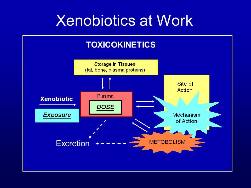 Xenobiotics at Work TOXICOKINETICS Xenobiotic Excretion