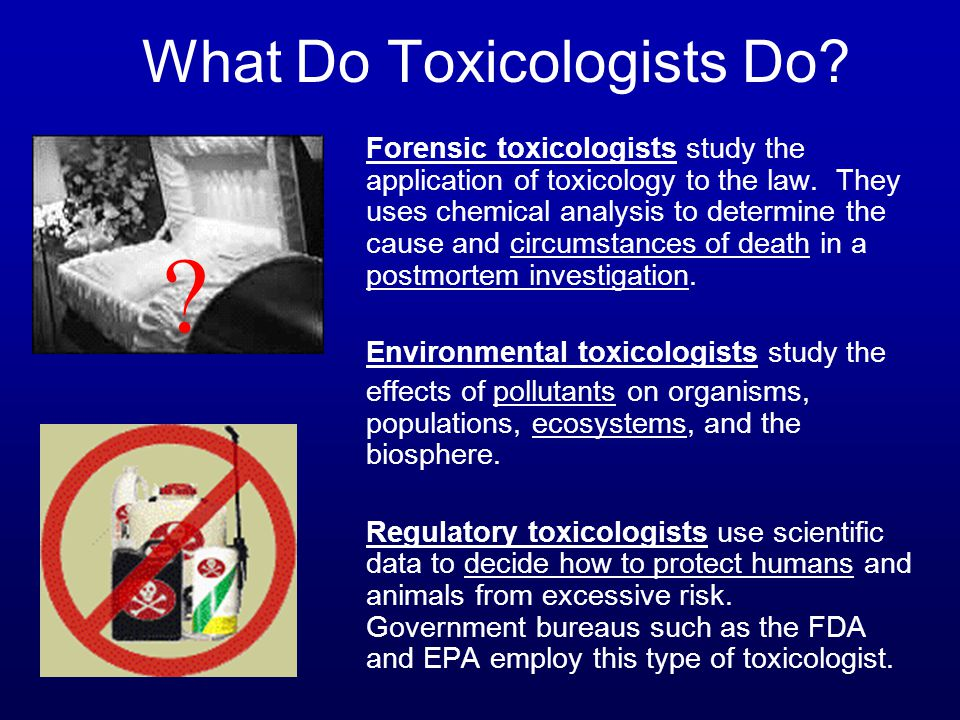 What Do Toxicologists Do