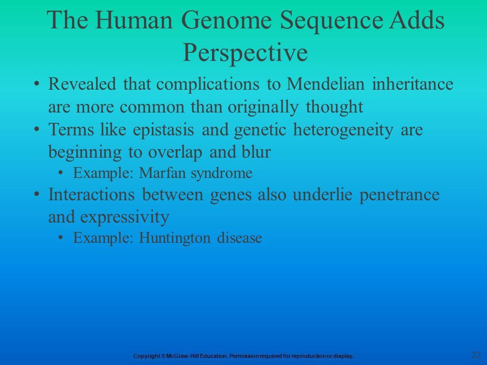 The Human Genome Sequence Adds Perspective