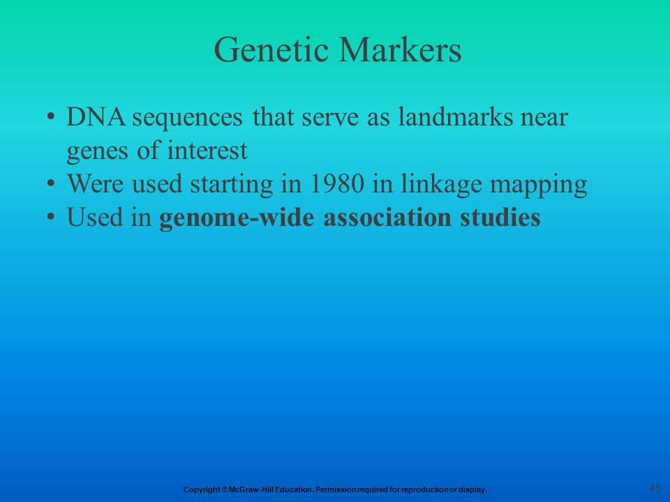 Genetic Markers DNA sequences that serve as landmarks near genes of interest. Were used starting in 1980 in linkage mapping.