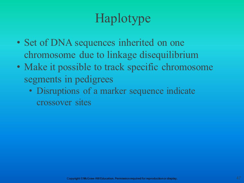 Haplotype Set of DNA sequences inherited on one chromosome due to linkage disequilibrium.