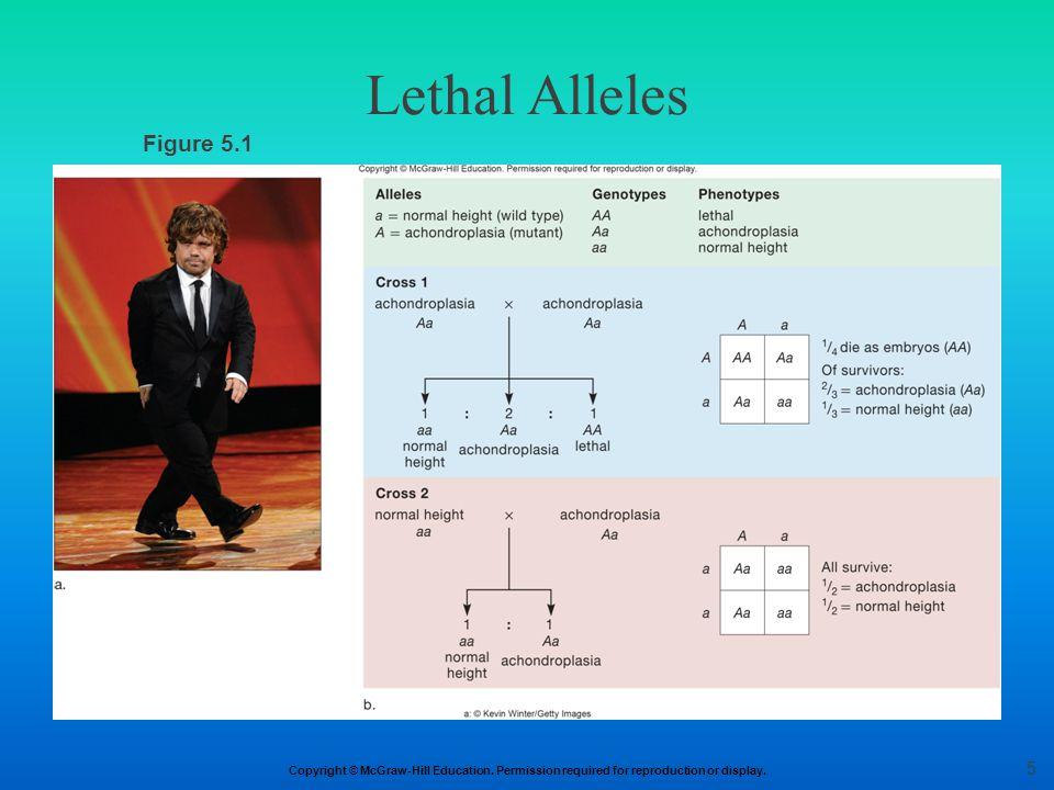Lethal Alleles Figure 5.1