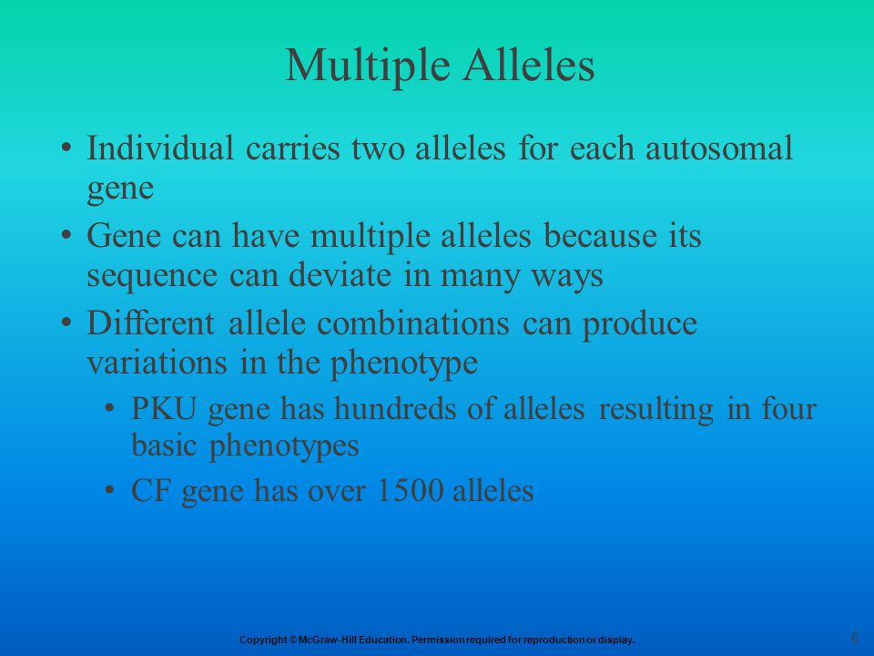 Multiple Alleles Individual carries two alleles for each autosomal gene.