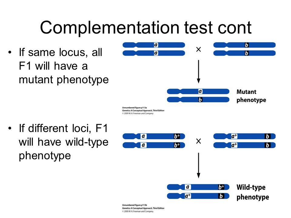 Complementation test cont