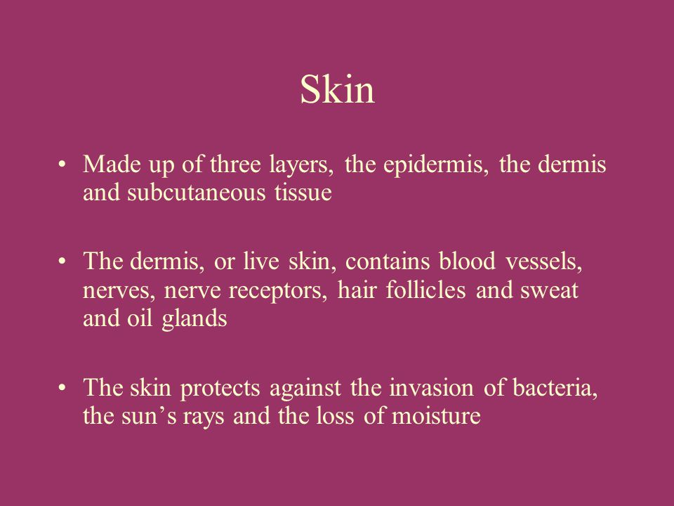 Skin Made up of three layers, the epidermis, the dermis and subcutaneous tissue.