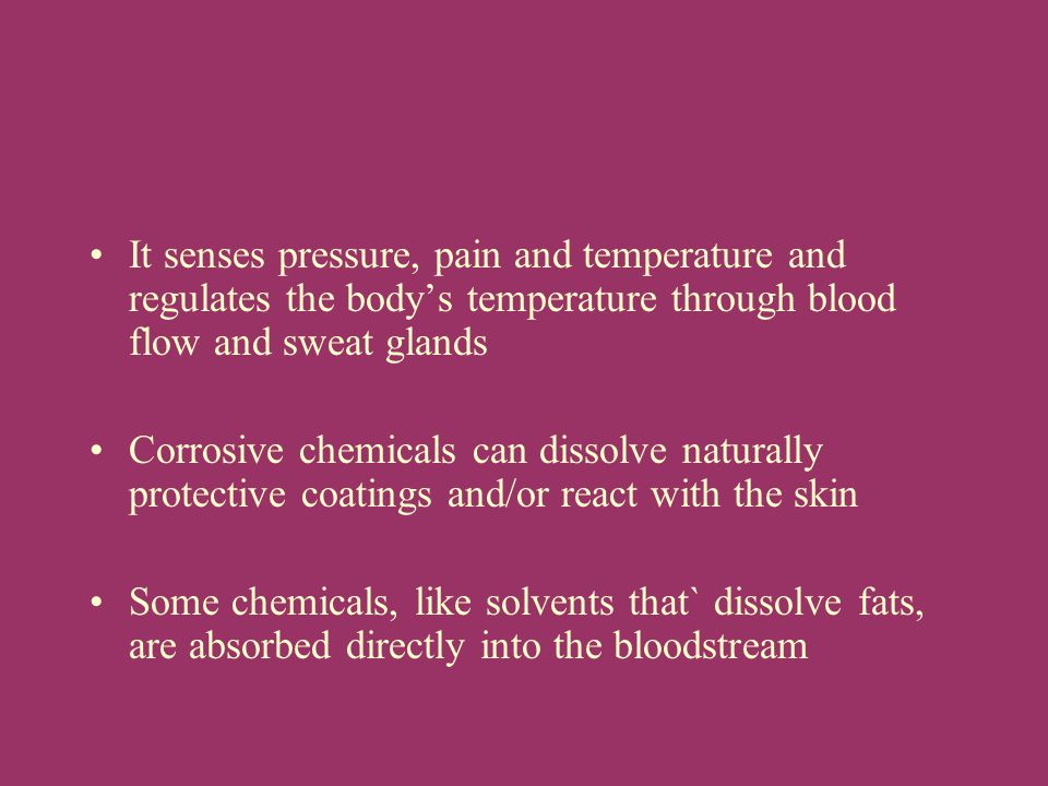 It senses pressure, pain and temperature and regulates the body's temperature through blood flow and sweat glands