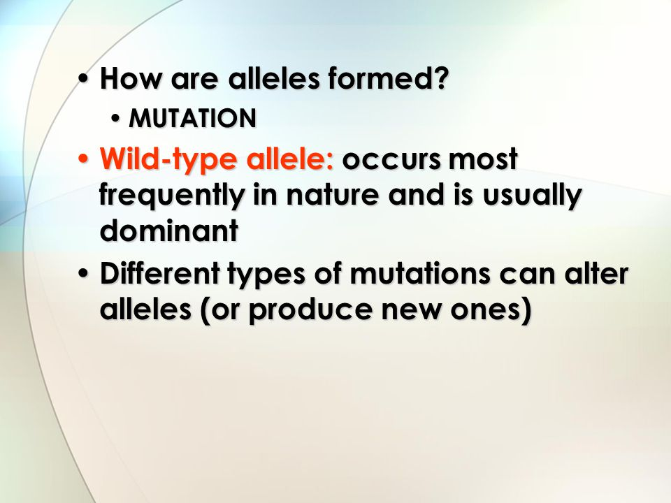 Different types of mutations can alter alleles (or produce new ones)