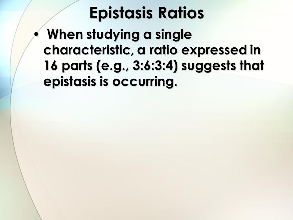 Epistasis Ratios When studying a single characteristic, a ratio expressed in 16 parts (e.g., 3:6:3:4) suggests that epistasis is occurring.