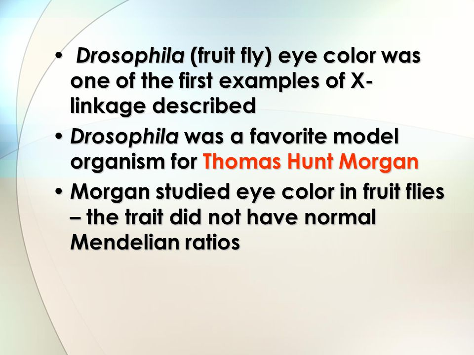 Drosophila (fruit fly) eye color was one of the first examples of X-linkage described