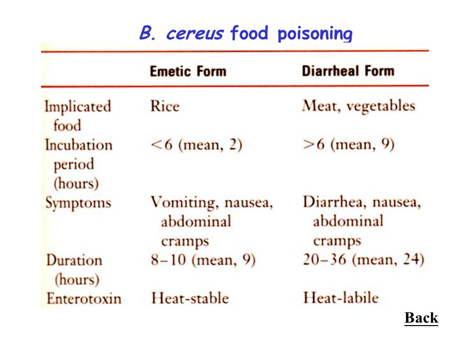 B. cereus food poisoning