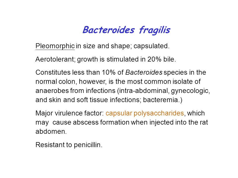 Bacteroides fragilis Pleomorphic in size and shape; capsulated.