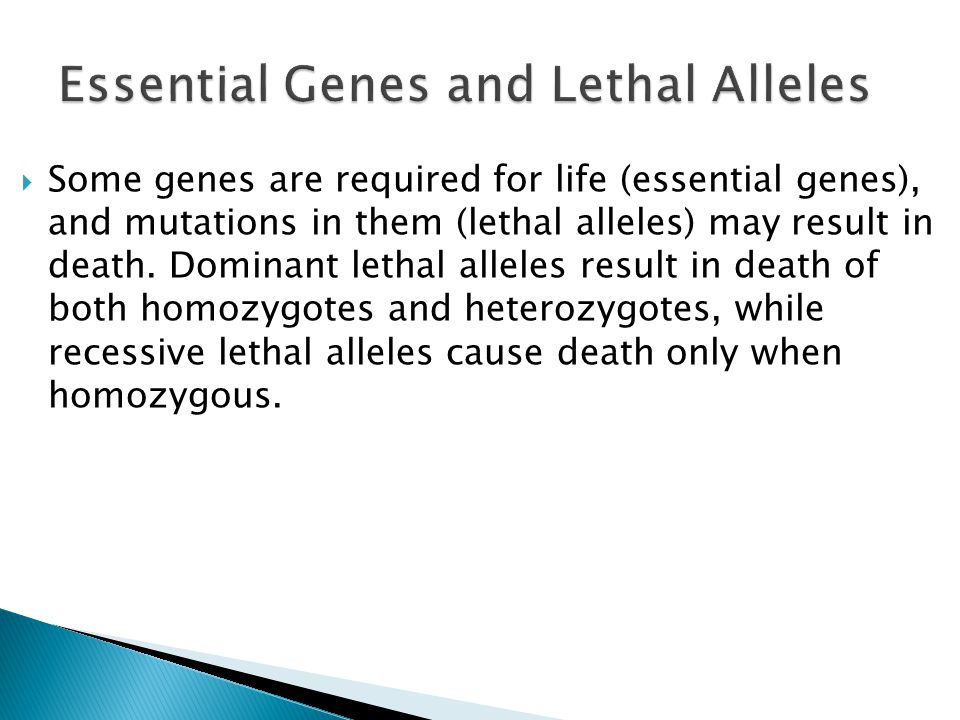 Essential Genes and Lethal Alleles