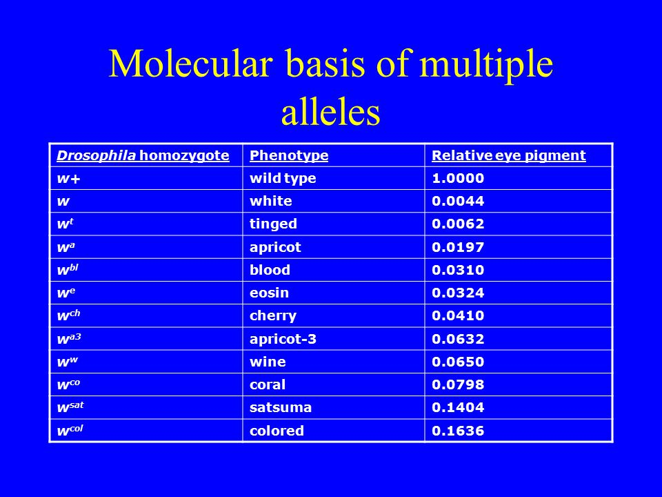 Molecular basis of multiple alleles