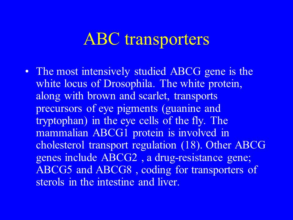 ABC transporters
