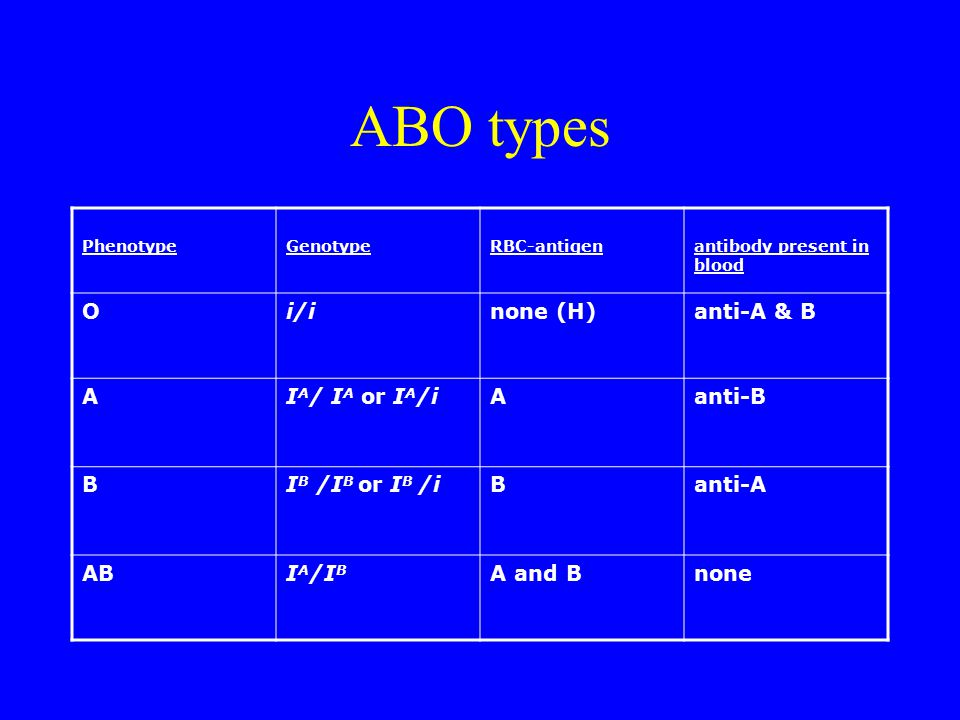 ABO types O i/i none (H) anti-A & B A IA/ IA or IA/i anti-B B