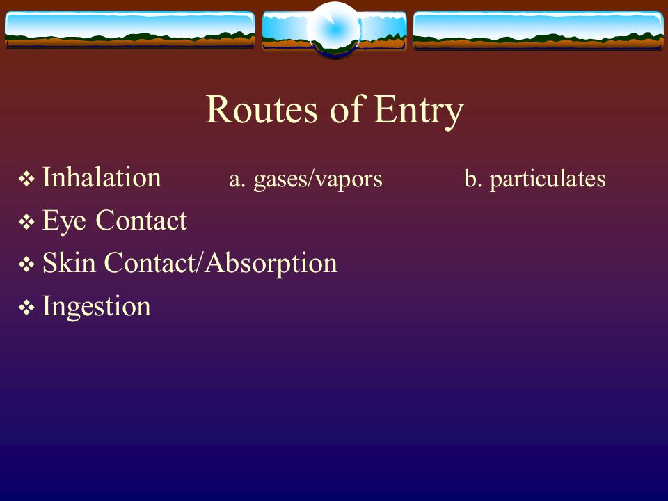 Routes of Entry Inhalation a. gases/vapors b. particulates Eye Contact