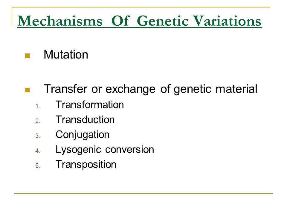 Mechanisms Of Genetic Variations