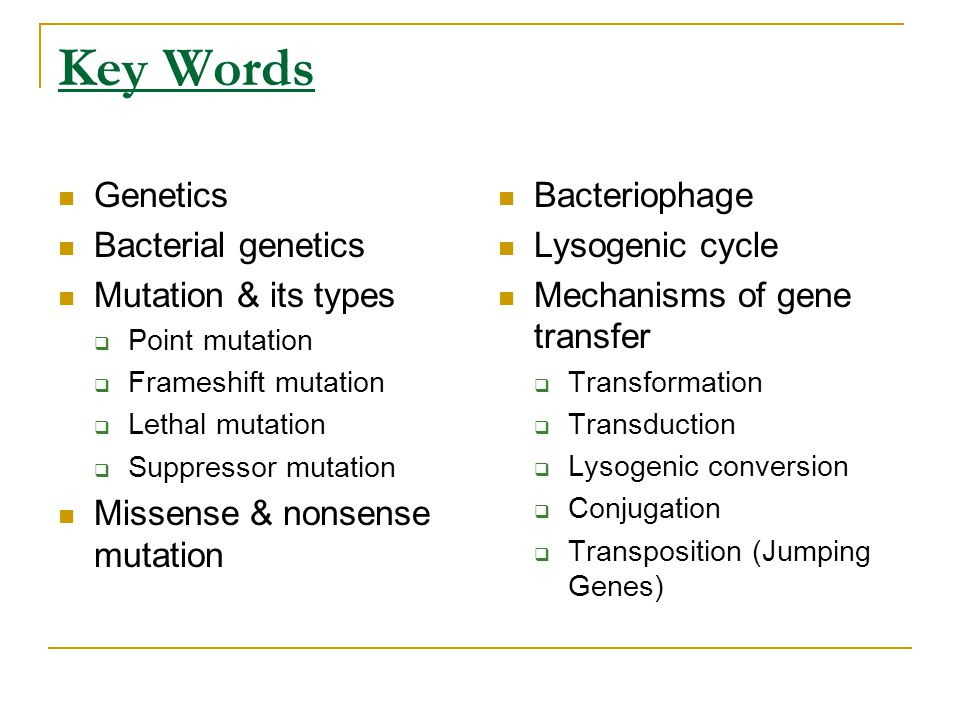 Key Words Genetics Bacterial genetics Mutation & its types
