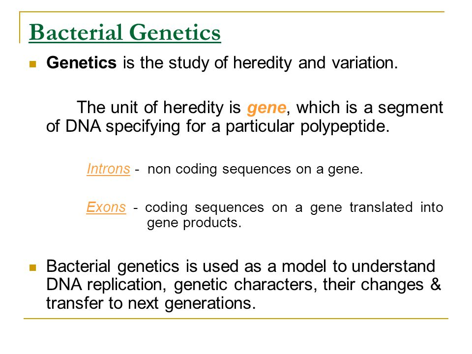 Bacterial Genetics Genetics is the study of heredity and variation.