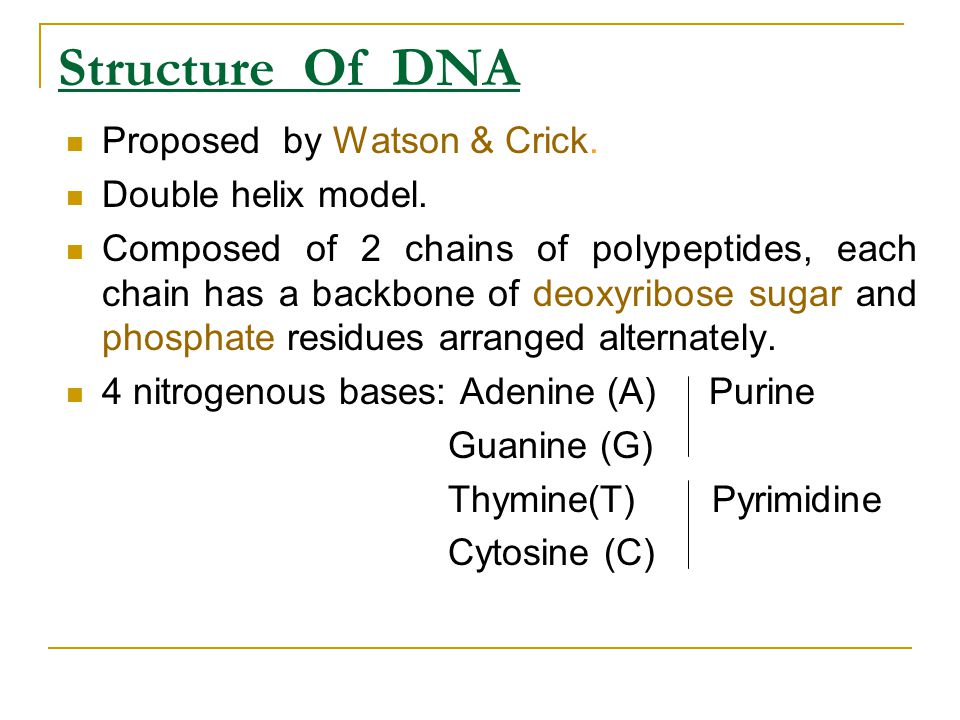 Structure Of DNA Proposed by Watson & Crick. Double helix model.