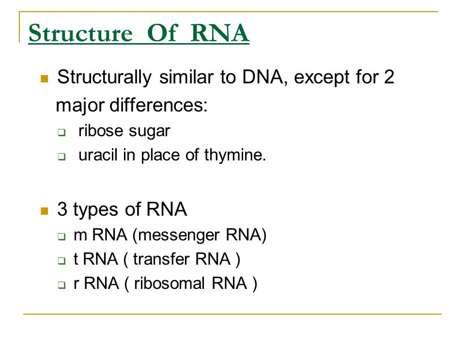 Structure Of RNA Structurally similar to DNA, except for 2